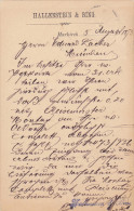 RP: Sainte-Marie-aux-Mines (Markirch)  , France ( When Germany) , PU-1893 ; Notice Card Hallenstein & Bing - Sainte-Marie-aux-Mines