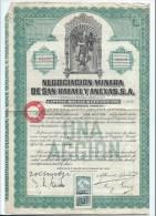 Negociacion Minera De San Rafael Y Anexas/MEXICO/Mexique/Action Au Porteur /1923   ACT102 - Mines