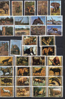 EMIRATS ARABES Lot  De 50  Timbres Animaux - Stamps