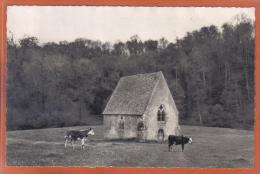 Carte Postale 61. Saint-Ceneri-le-Gerei  La Chapelle Vaches En Pâturage  Trés Beau Plan - France