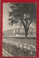 LE HAVRE - Dépt 76 - Le Jardin De L'Hôtel De Ville  -  CPSM - - Le Havre