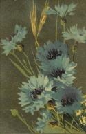 Bleuets Dans Les Blés - Collection TAM N° 1112 - Fleurs