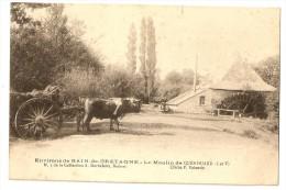 ATTELAGE De BOEUFS - MOULIN De QUENOUARD - Près BAIN - Other Municipalities