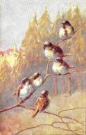 [DC2672] CPA - UCCELLI SU RAMO - OILETTE - Viaggiata - Old Postcard - Uccelli