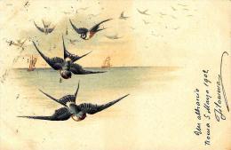 [DC2674] CPA - UCCELLO AL MARE - ANIMALI - Viaggiata 1902 - Old Postcard - Uccelli