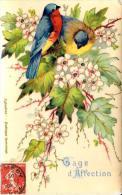 [DC2675] CPA - UCCELLI - EGLANTINE - ANIMALI - Viaggiata - Old Postcard - Uccelli