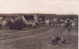 45 - Dordives - L'Eglise Et Vue Générale (animée, Chevaux...griffe) - Dordives