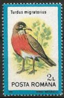Romania - MNH - Family TRUSHES : American Robin (Turdus Migratorius ) - Zangvogels