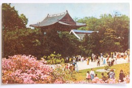 Changduk Palace, South Korea - Korea, South