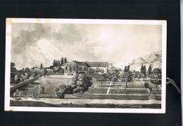 SAINTE-HELENE - Longwood - Pub Verso PLASMARINE  - Format 18 X 10,5-Scans Recto Verso-PAYPAL Sans Frais - Postcards