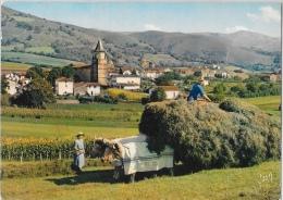 Aïnhoa (Basses-Pyrénées) - Village Type Du Pays Basque - Attelage De Boeufs - Edition Yvon - Carte E.K.B. N°1024 - Ainhoa
