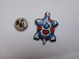 Beau Pin's , Tortue , Turtle - Animales