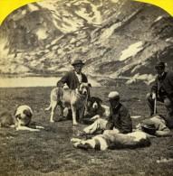 Suisse Hospice Du Grand St Bernard Les Chiens Alpine Club Ancienne Photo William England 1863 - Stereoscopic