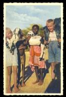 Rhein. Mission In Sudwest-Afrika Missionarskinder U. Bergdamakinder Beim Spiel / Postcard Not Circulated - Missionen