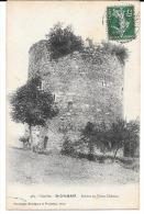 Cpa St-Chamant - Ruines Du Vieux Château . - France