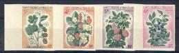 S. Pierre Et Miquelon 1970 Serie N. 401-404 Fiori MNH GO NON DENTELLATO Catalogo € 42,50 - St.Pierre & Miquelon
