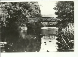 Environs De Daverdisse  La Lesse Et Le Pont De Mohimont - Daverdisse