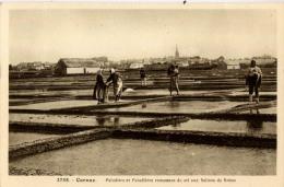 56 CARNAC PALUDIERS SALINES DE BRENO 3755 - Carnac