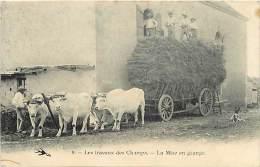 - Nievre - Ref-A 397 - Les Travaux Des Champs - La Mise En Grange - Les Foins - Attelage Boeufs - Attelages - - France