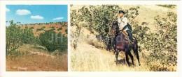 Pistachio Grove - Guard - Horse - Badhyz State Nature Reserve - 1981 - Turkmenistan USSR - Unused - Turkménistan