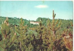 Camaldoli (Arezzo, Toscana) Albergo Montanino, Panorama - Arezzo