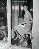 Audrey Hepburn - 0225 - Glossy Photo 8 X 10 Inches - Berühmtheiten