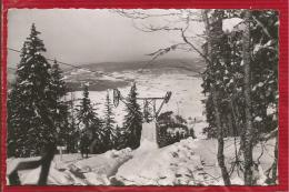 LES ROUSSES - Dépt 39 - Alt. 1110 M - Le Monte-pente Des Tuffes  - CPSM - Frankreich