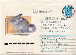 Postal History Cover: Soviet Union Used Postal Stationery With Animal, WWF Topic - W.W.F.