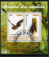 BURUNDI ( MINI-FEUILLET 2011 ) : FAUNE  DU  MONDE , FEUILLET  DE  DEUX  TIMBRES  OBLITERES , A VOIR .