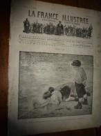 1894 LA FRANCE ILLUSTREE :Tremblement De Terre SICILE(Scilla,Palmi,Reggio,Bagnara);Canal St-Martin(grav);Expo Chrysanth - Giornali