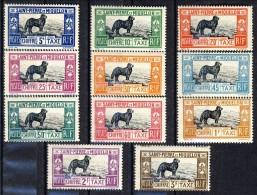 S. Pierre Et Miquelon Tasse 1932 Serie N. 21-31 Cane Terranova MVLH GO Catalogo € 210 - Segnatasse