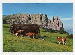 ITALY - AK 265970 Dolomiten - Seiser Alm Gegen Schlern - Italia