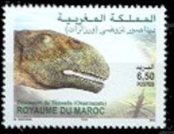 Morocco 2004 Single Dinosaur Prehistoric Fossil Ouarzazate #973 - Morocco (1956-...)