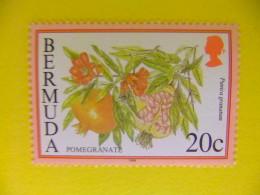 BERMUDA - BERMUDES - 1998 Yvert Nº 754 º FU - Bermudas