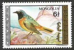 Mongolia - MNH - Family OLD WORLD FLYCATCHERS And CHATS - Common Redstart ( Phoenicurus Phoenicurus ) - Zangvogels