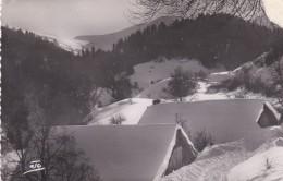 Environs De Gap En Montant A Ceuse - Francia