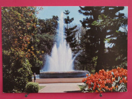 Carte Très Peu Courante - Zimbabwe - Harare - Fountain To Celebrate Bulawayo´s 75th Birthday - Scans Recto-verso - Zimbabwe