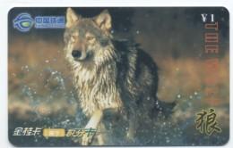Loup Wolf Lobo Lupo  Animal Télécarte Phonecard  R 313 - Altri