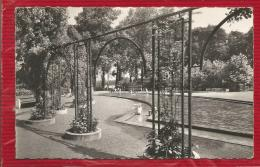 LILLE - Dépt 59 - Le Jardin De La Citadelle  - CPSM - Photo Véritable - Lille