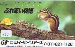 Télécarte Japon Animal- ECUREUIL - SQUIRREL Japan Phonecard (468) EICHHÖRNCHEN Telefonkarte - ARDILLA -  EEKHOORN - Telefoonkaarten