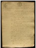 1823 Pleumartin (Vienne),donation Entre Vifs à La Veuve Changobert Née Charandeau - Manuscripts