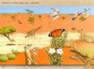 Namibia - 2015 Kalahari Postcard Dove Cancelled - Tauben & Flughühner