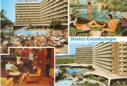 HOTEL GUADALUPE  MAGALILUF  MALLORCA - Mallorca