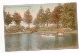 33186  - Lommel  Propriété  Des  Stevensvennen -  Le  Lac -  Couleur - Lommel