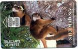 """MADAGASCAR: MDG-01 """"Lemurus Of Madagascar"""" - Madagaskar"""