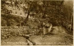 SURREY - HINDHEAD - WAGGONERS WELLS - THE WISHING WELL AND TEA GARDENS Sur226 - Surrey