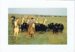 Cpsm  Taureaux De Camargue Et Ses Gardians - Bull