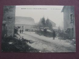 CPA 70 BOREY Route De Montjustin Sous La Neige RARE PLAN ? ANIMEE En Petit Plan Canton VILLERSEXEL - France