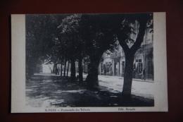 ST PONS - Promenade Des Tilleuls. - Saint-Pons-de-Thomières
