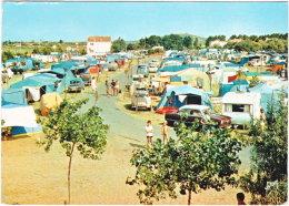 34. Gf. MARSEILLAN-PLAGE. Vue Générale Et Camping Municipal. 2 - Marseillan
